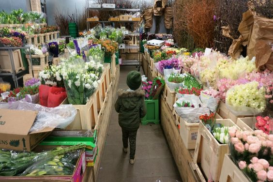 Family-Friendly Walking Tour of NYC's Flower District