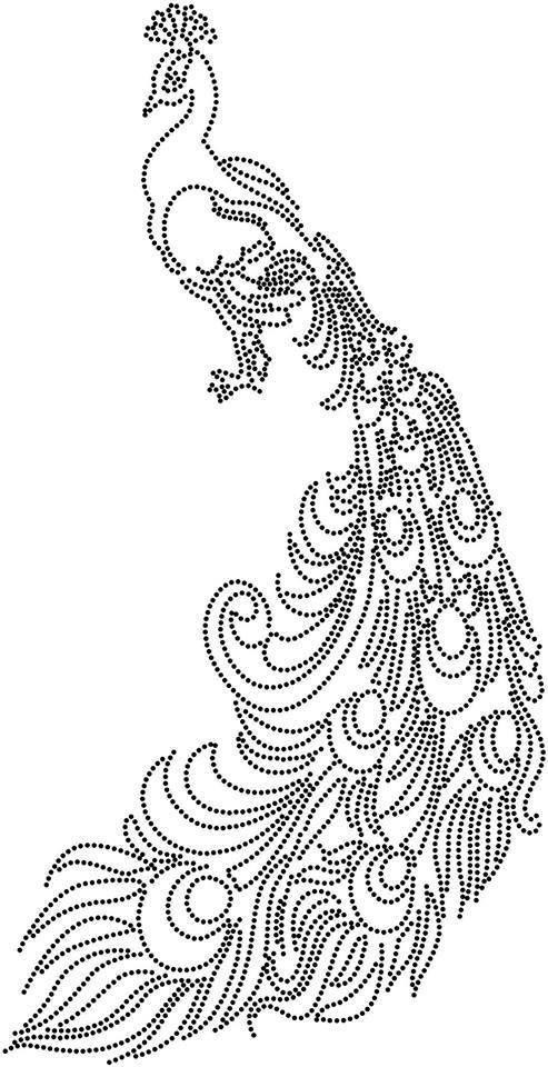 تعلم لرسم الخطوط والمنحنيات من ريش الطاووس:
