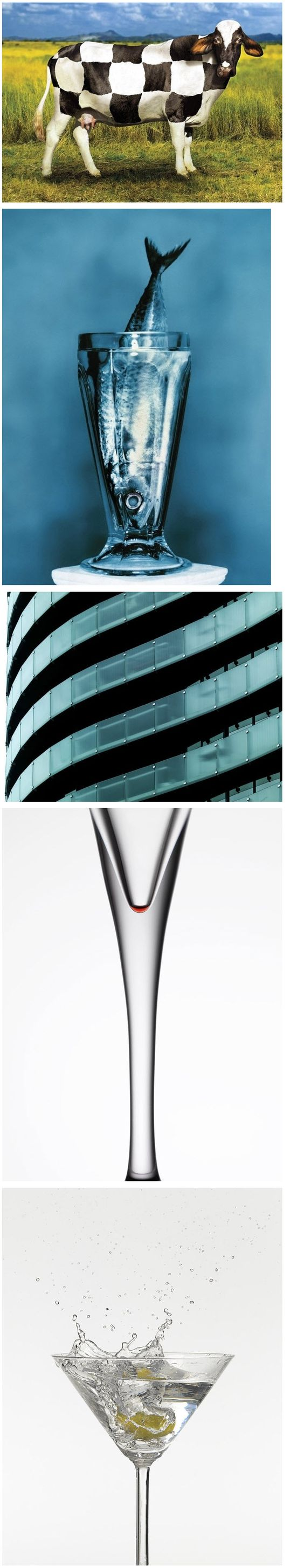 Mauro Risch Photography | Warning: Graphic Design | Pinterest ...