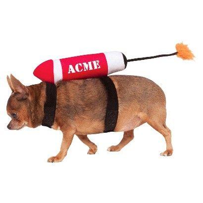 ACME Rocket Pet Costume $14.99 For Joey.