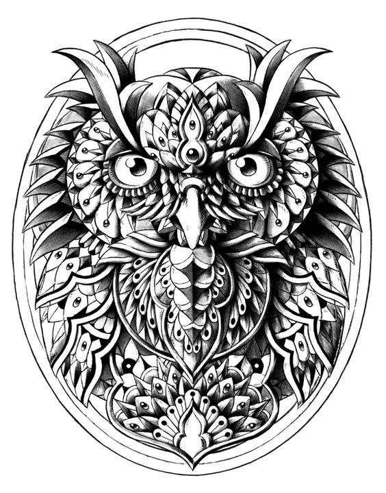 Owl Portrait Art Print