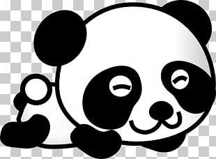 Pegatina De La Panda Dibujo De Los Pandas Bebe Oso Panda Gigante Gambar Kartun Panda Png Clipart Panda Coloring Pages Panda Facts Cute Panda Cartoon