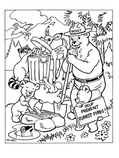 Smokey The Bear Coloring Pages Forest Coloring Book Smokey The