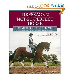 Janet Foy's book