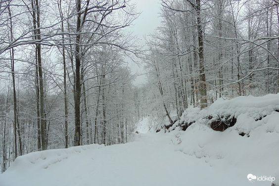 Téli túra a Bihar-hegységben