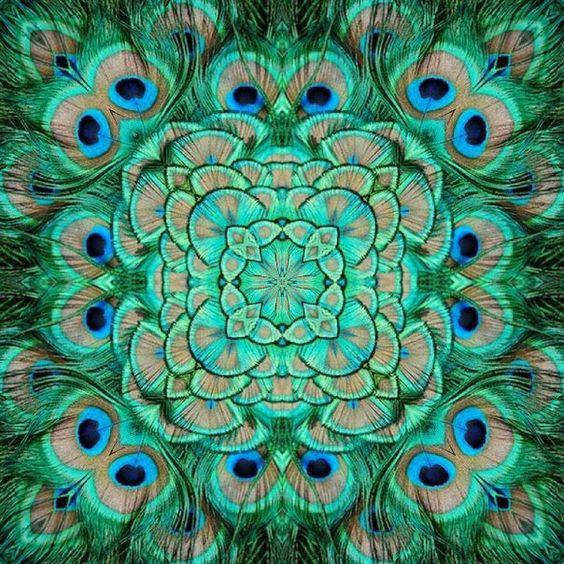 ❤~ Mandala ~❤ Plumas de Pavo Real.