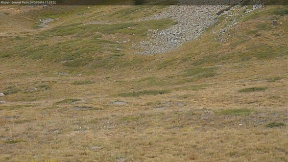 Foto Bollettino Neve Vars: http://www.bollettinoneve.net/bollettino-neve-vars.html Bollettino neve Alpi meridionali francesi #neve #montagna #snowboard #snow #mountain #sciare #inverno #ski #skislope #skier #skiing #winter #alpi #alps #appennini alps | italy | ski chalet | snowboarding | heritage site | Snow Style | Snow photography | Snow Falls | mountain photography | snowy mountains | mountain photography | Mountains and snow | snow mountain | mountaineering | trekking | Ski Resorts…