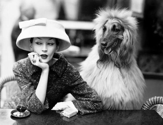 deshistoiresdemode:  Dovima in Balenciaga & Sacha by Richard Avedon _Café des Deux Magots, Paris, August 1955.