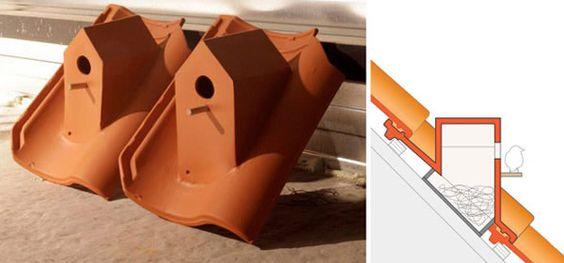 Casa de passarinho na telha