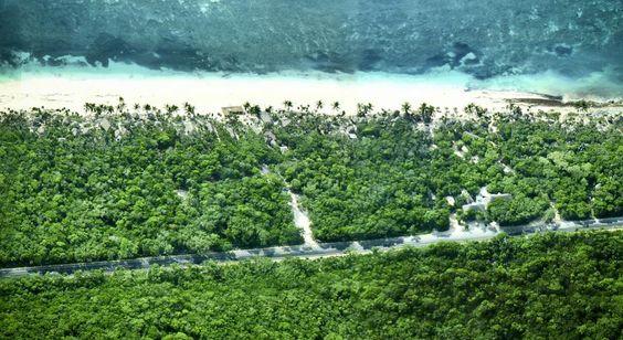 Booking.com: Hotel Papaya Playa Project - Tulum, Mexico