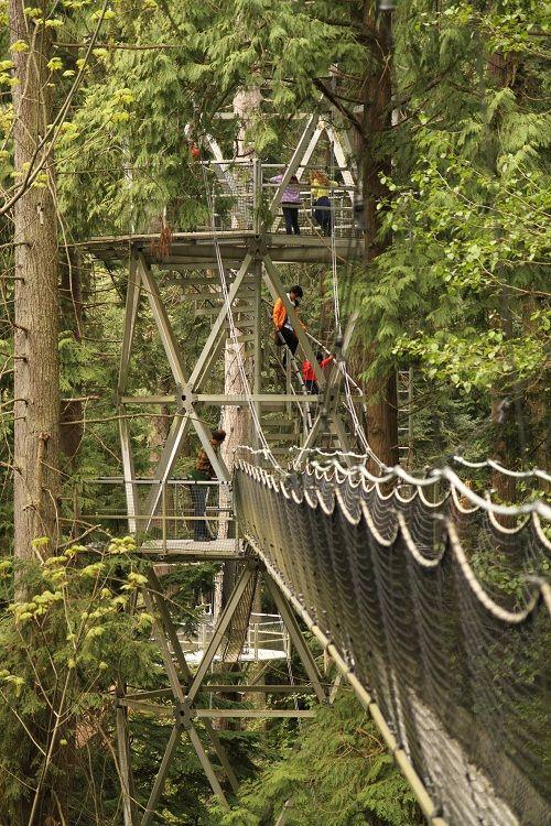 University of British Columbia Greenheart TreeWalk