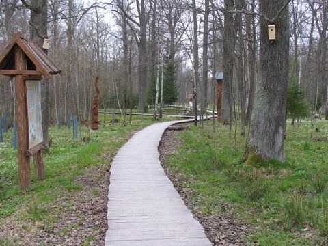 Neries regional park>> cognitive walkway of Dūkštos oak-woods. Very nice place to go if you want to understand Lithuanian nature and pre-Christian religion more.