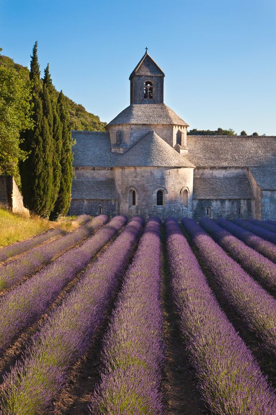 Senanque Abbey, Vaucluse, Gordes, Provence, France - Romanesque architecture • photo: by Chantal Seigneurgens, via 500px: