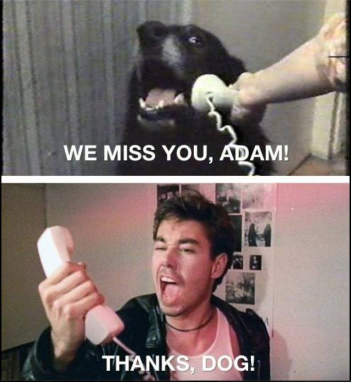 We miss you, Adam! - Thanks, dog!