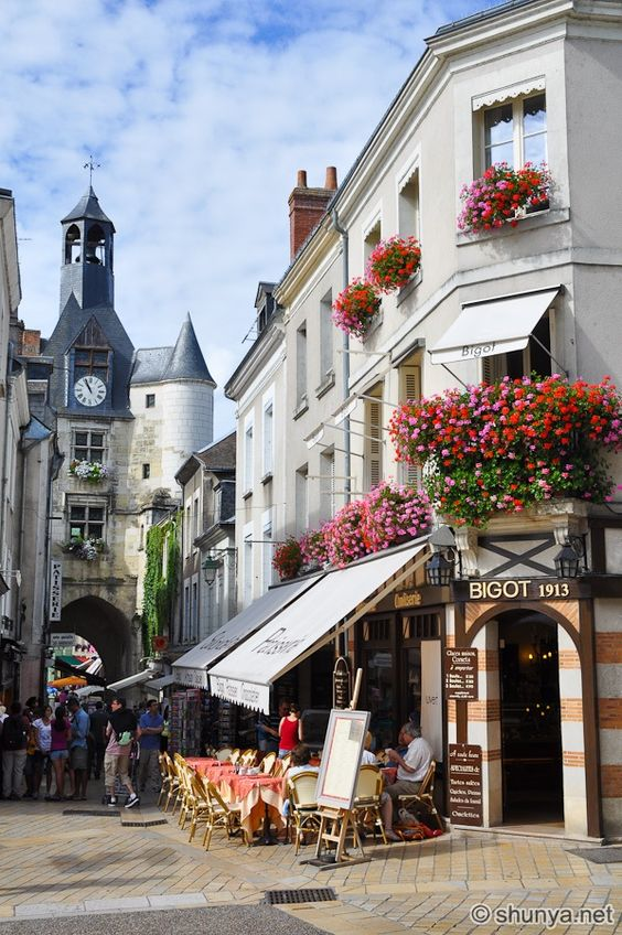 Amboise on the banks of the Loire River, France.