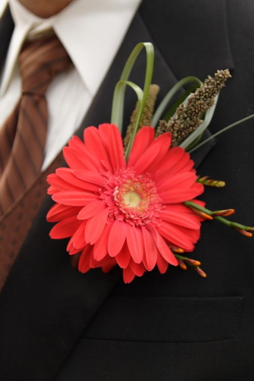 Corsages And Boutonnieres   corsage, boutineers and flower girls: Fall Gerbera Daisy Boutonniere