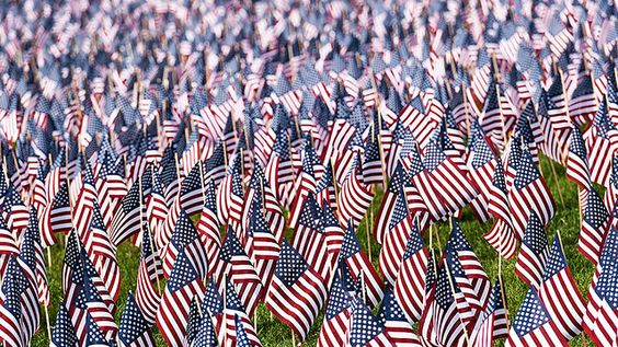 memorial day flags boston common 2015
