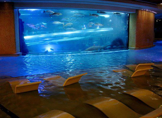 Love the idea of a fish tank wall by the pool and then for Fish tank in wall