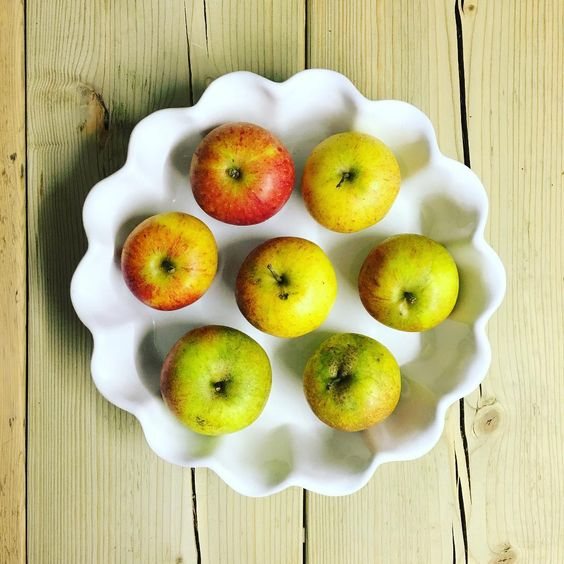 #apples in a #white #ceramic #pie #dish #dealboards #myhome #simple #lessismore