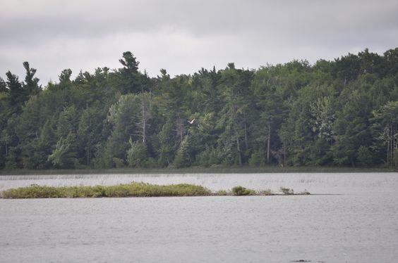 Font Lake-Beaver Island.