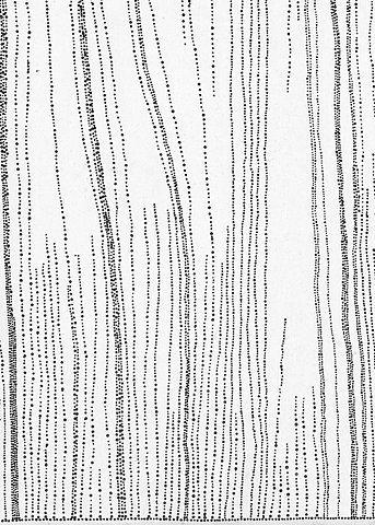Travelling Dots - black & white pattern // Dorothy Napangardi