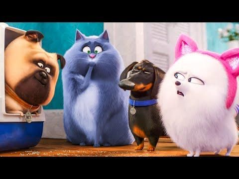 The Secret Life Of Pets 2 7 Minute Trailer 2019 Watch The Official Trailer Compilation For The Secret Life Of Pets 2 Secret Life Of Pets Pets Secret Life