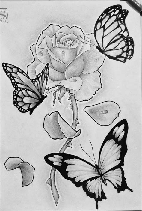 Resultado De Imagen De Drawings Of Flowers And Butterflies Rose And Butterfly Tattoo Butterfly Sketch Butterfly Tattoo Designs