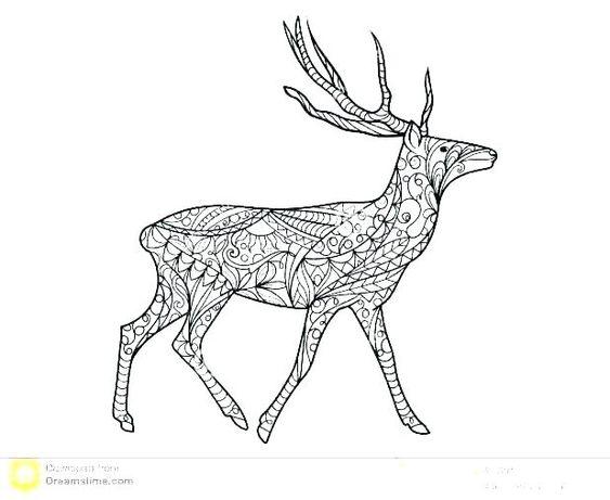 Baby Deer Coloring Sheets Deer Coloring Page John Coloring Page Deer Coloring Pages Baby Deer Colori Deer Coloring Pages Baby Coloring Pages Realistic Reindeer