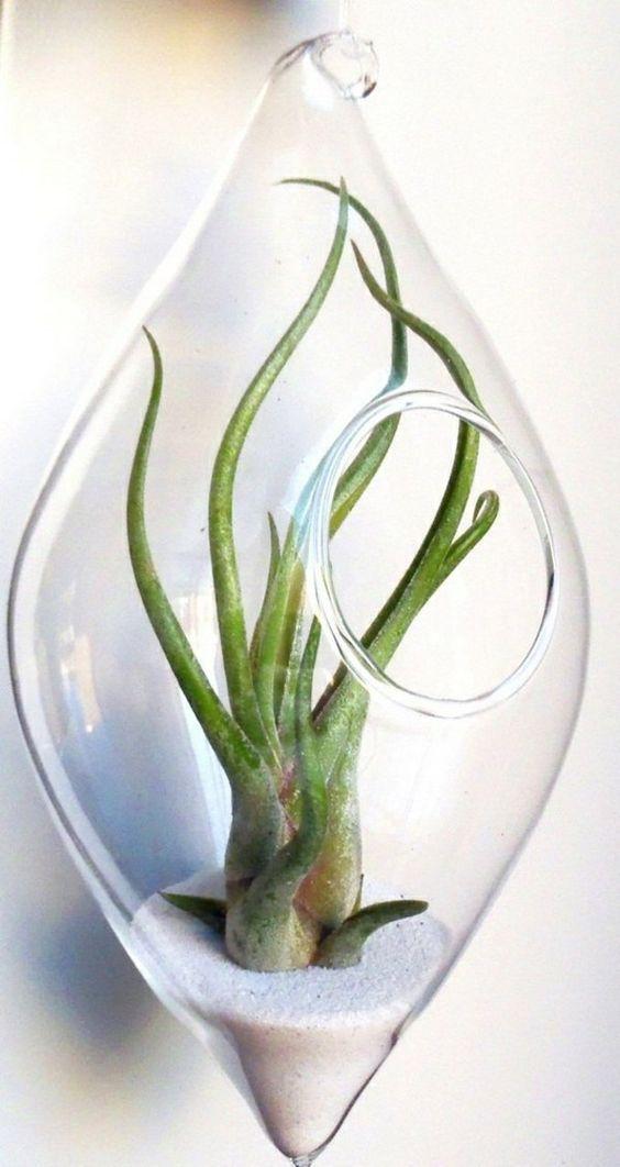 Design steampunk and interieur on pinterest - Idee deco plante interieur ...