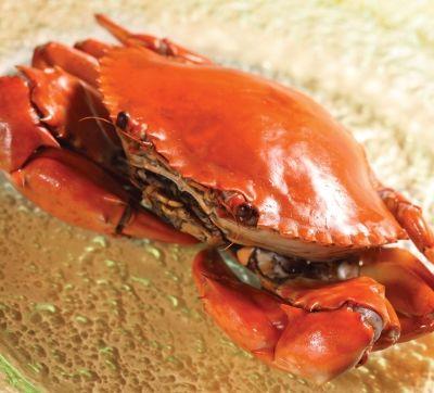 清蒸黃油蟹