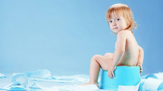 Lors de l'apprentissage de la propreté, beaucoup de parents s'interrogent sur le pot idéal pour leur tout-petit qui grandit... Réducteurs...