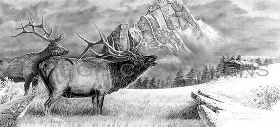 Rocky Mountain Morn, wildlife Rocky Mountain Elk, pencil drawing by western…