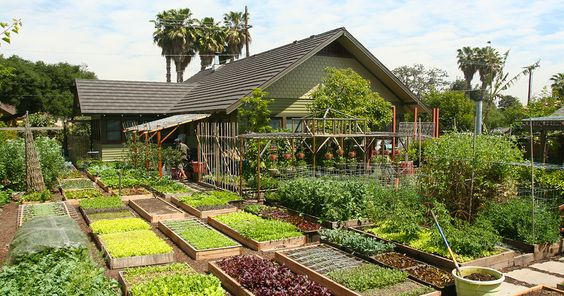 farm shop los angeles - Google 検索