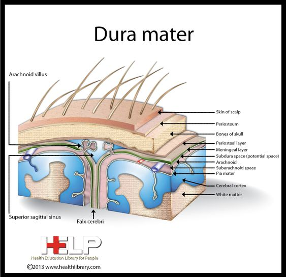 what might be your dura