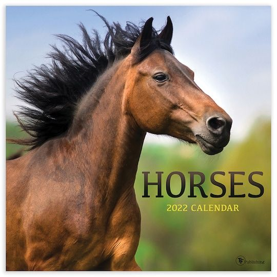 Horse Calendar 2022.Tf Publishing 2022 Horses Wall Calendar In 2021 Wall Calendar Horse Wall Wall