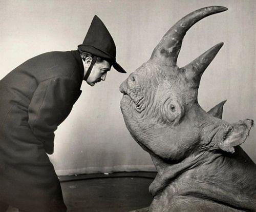 Dalí and rhinoceros, Philippe Halsman, 1956