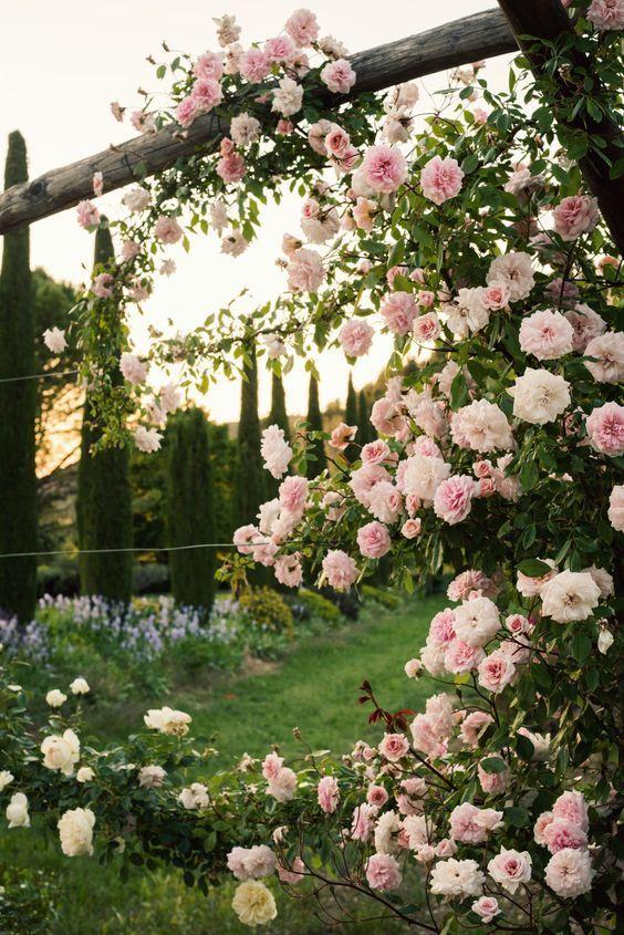 Rosenbogen Im Garten Beautiful Flowers Garden Beautiful Gardens Beautiful Flowers