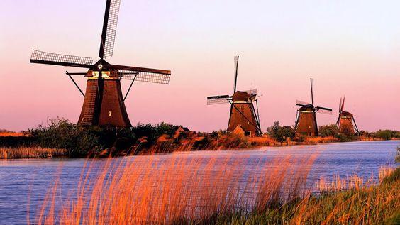 bia Hà Lan