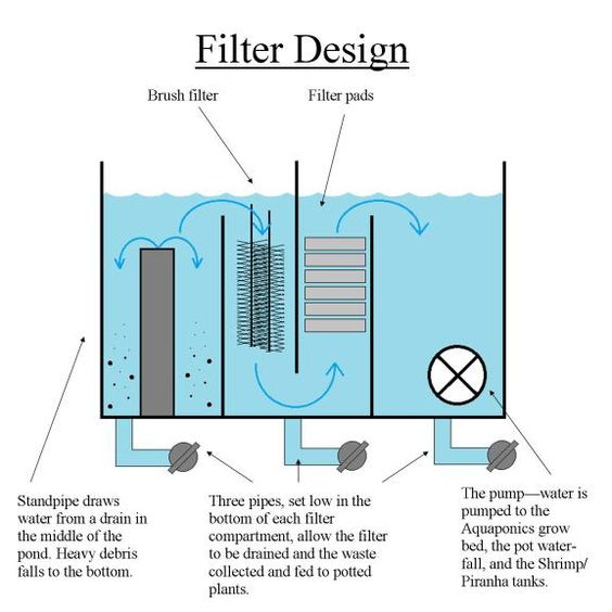 Aquaponics pond filters and ponds on pinterest for Design of a pond system