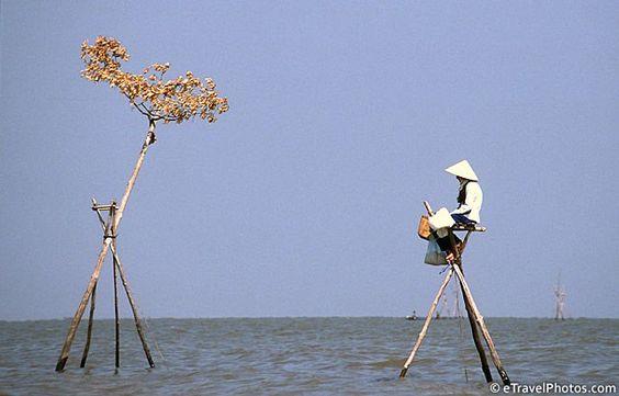 Pesca no lago Tonle Sap fora da cidade flutuante de Kompong Luong, província de Pursat, Camboja.