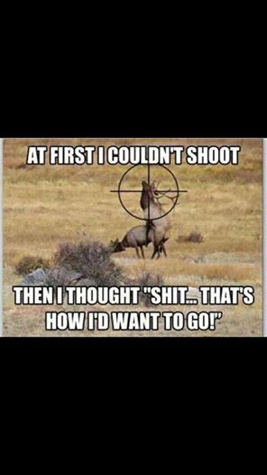 Funny Hunting Quotes Stunning Dead Excited Then Hopefully Just As He Cums  Dead ☑  What