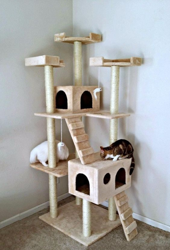 Best Cat Tree Ideas To Make Feline Happy With Images Cool Cat