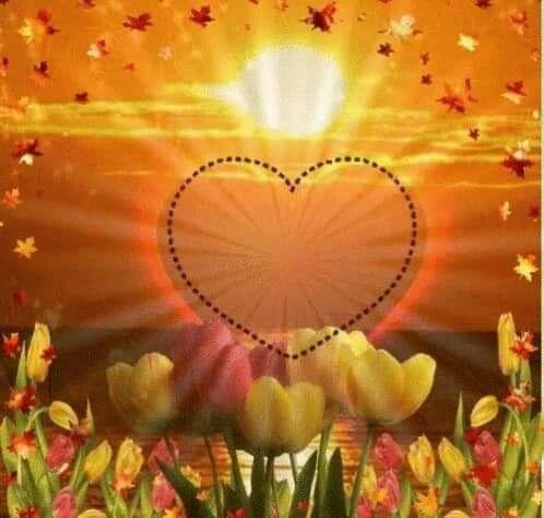 Pin Von Seelen Farben Auf Sonnenuntergange Schon Gif Liebe Gif