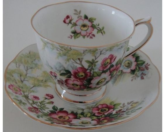 Pretty Royal Albert Wild Rose Cup and Saucer