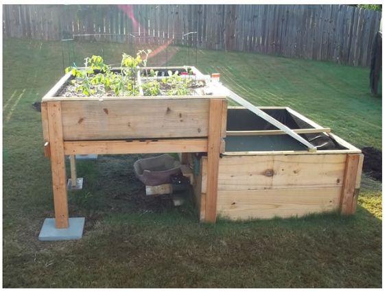 Do It Yourself Home Design: Backyard Solar Powered Aquaponics System