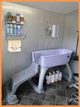 Dog wash at our Purbeck Salon, near Wareham