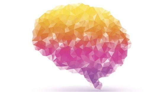 Saiba como será o seu cérebro em 2050: