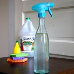 Natural Spring Surface Cleaner