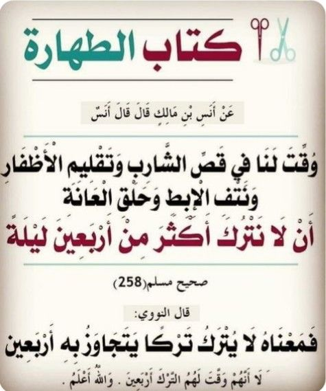 Pin By Amed Smahi On احاديث نبويه شريفه Islam Facts Islamic Quotes Arabic Quotes