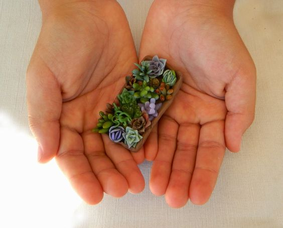 Succulents collection by Chama Navarro. #bijoux #jewerly #succulents #brooch #polymer_clay